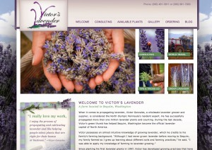 Victor's Lavender New Website