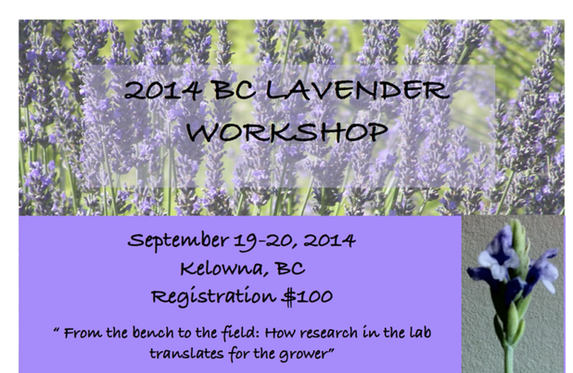 BC LAV WORKSHOP 2014