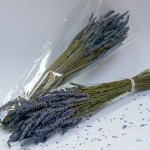 Grosso Lavender Bunch