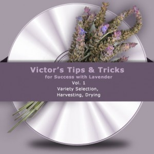 Victor's Tips and Tricks CD